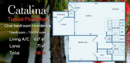 Catalina One Bedroom Floor Plan