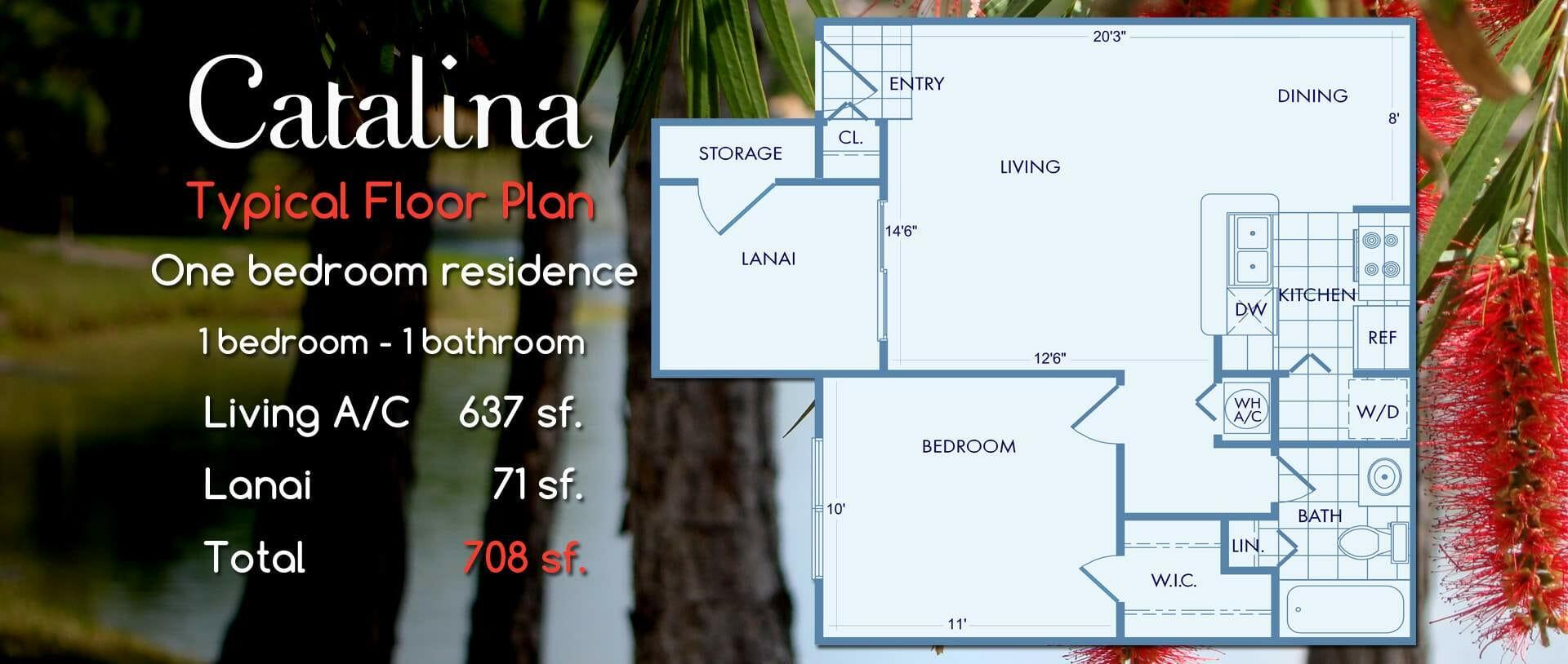 Catalina | One Bedroom Floor Plan